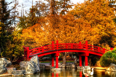 Japanese Friendship Gardens, San Jose