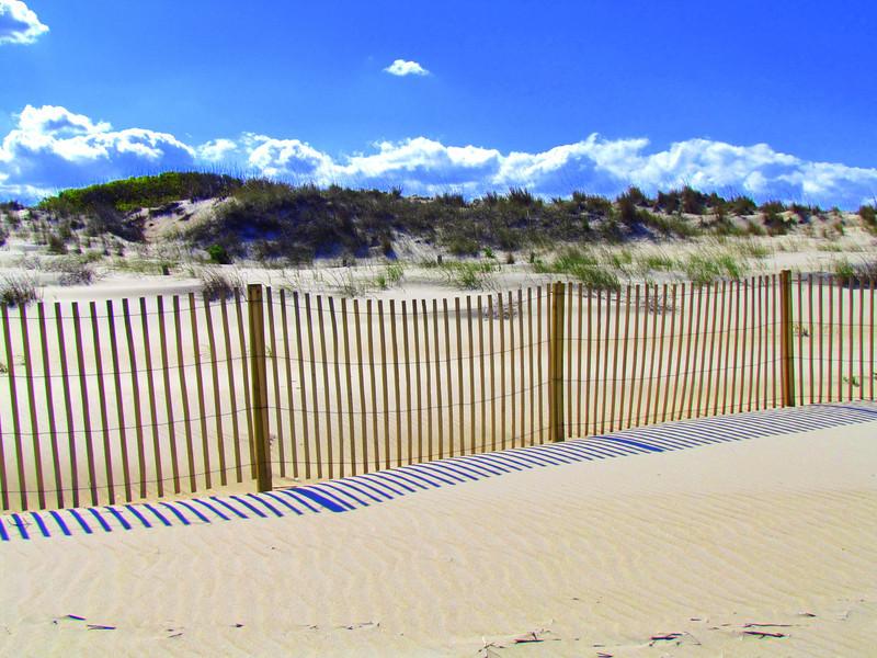 Dam Neck Beach (93).jpg