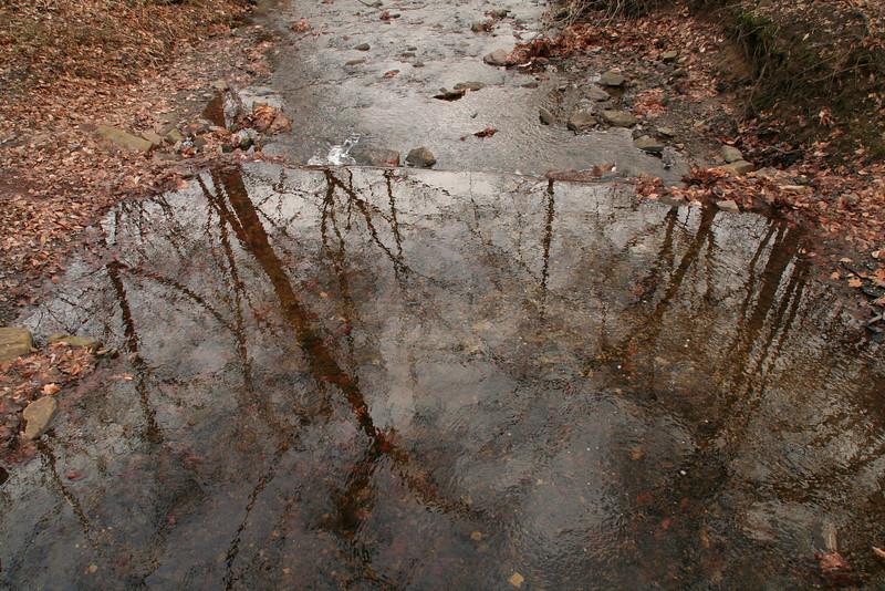 Lorimer Park Walk 003.jpg
