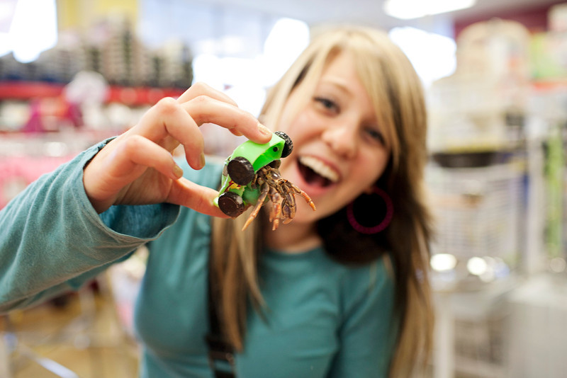 Then on to find another pet store that had BUNNIES and HERMIT CRABS...only animal Daniel did NOT like!