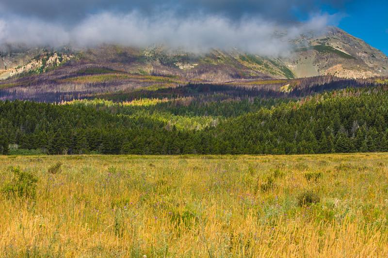 Colors of Montana