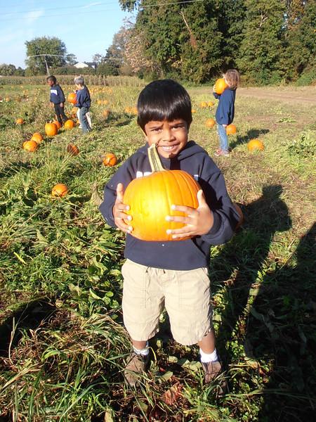 Kindergarten Pumpkin Activity