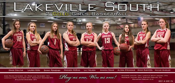Cougars 7A Girls Basketball 2014