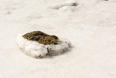 Salt pans of Jan Thiel