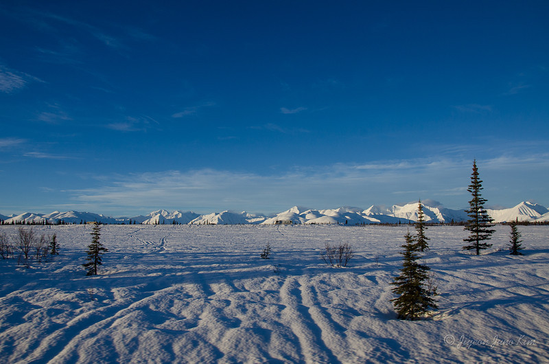 USA-alaska-Alaska Railroad-2214.jpg