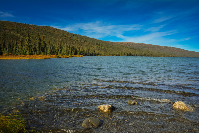 Denali-National-Park-127.jpg