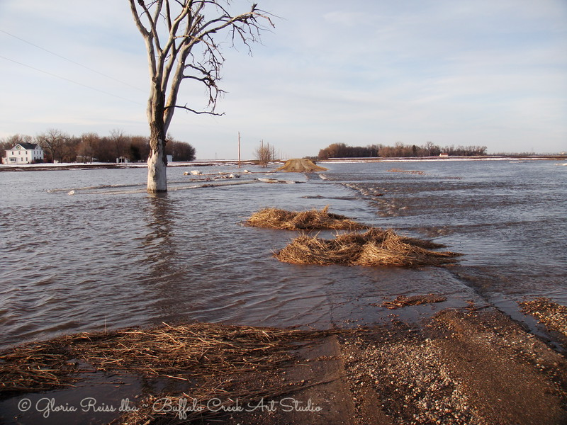 Buffalo Creek has swallowed the road again this spring.