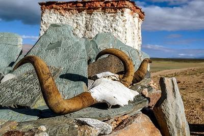 65  традиционная экспедиция к горе Кайлас