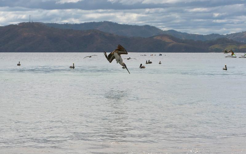 Costa Rica 14.jpg