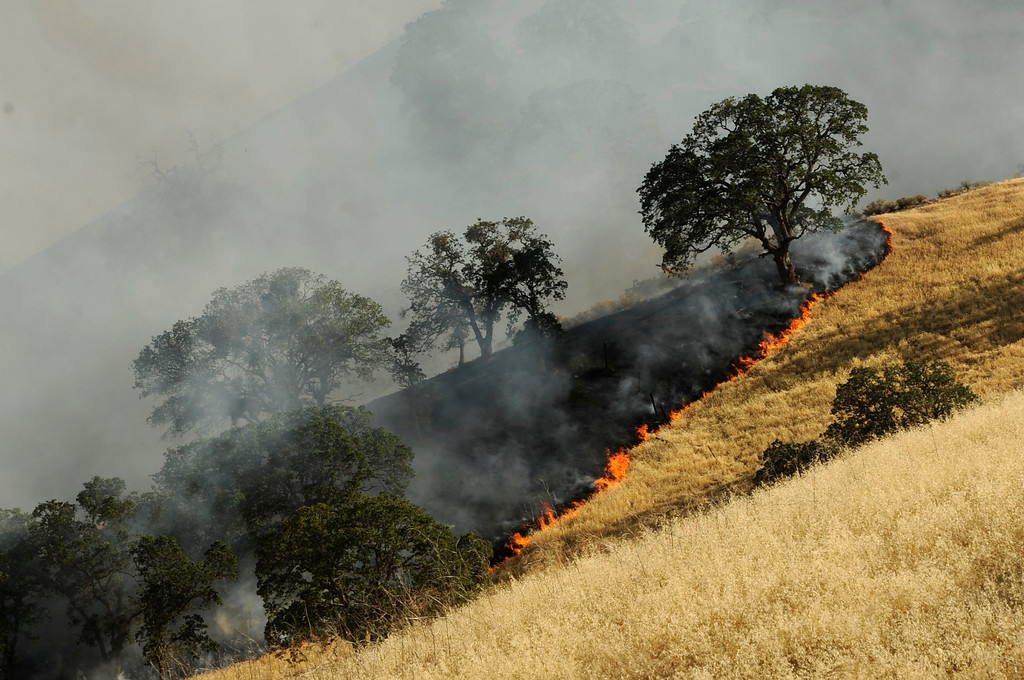 . A vegetation fire moves up a canyon near Foothill Dr. where a blue sky is filled with smoke in Antioch, Calif., on Wednesday, June 24, 2015. (Susan Tripp Pollard/Bay Area News Group)