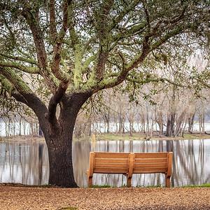 2018_Brazos-Bend-Park-546-Edit