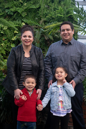 Trevino Family Christmas Minis 2018