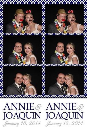 2014-01-18 Annie & Joaquin Wedding