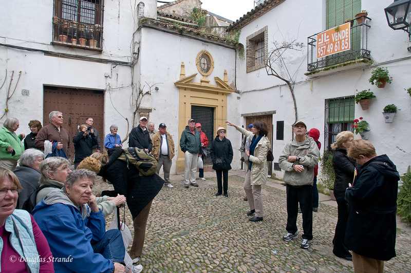 Thur 3/10 in Cordoba: Look! Over there.