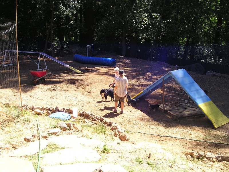 Mary is building an agility yard. We're about to following TSD and Mariel through the agility yard into the forest in our quest for The Other End Of The Fire Road.