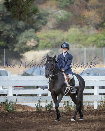 Flat Classes- Young Rider