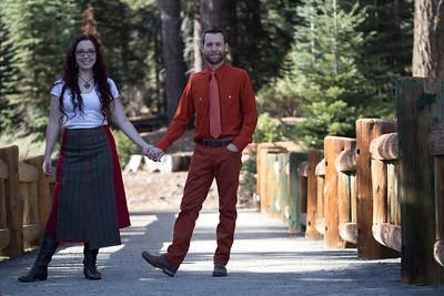 Sequoia Winter