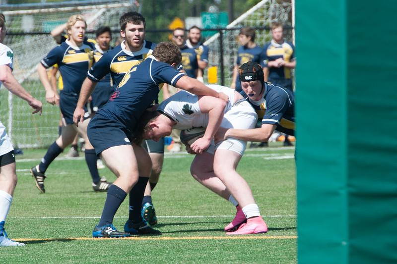 2015 Michigan Rugby vs. Norte 547.jpg