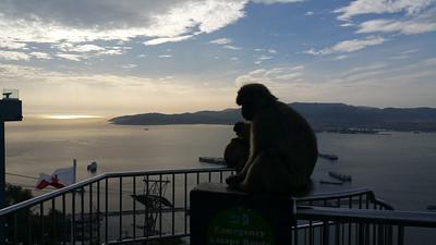 Gibraltar, UK Nov 25