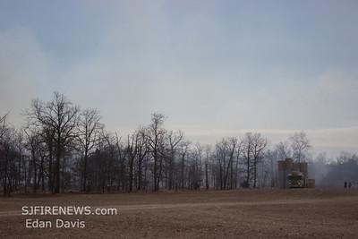 03-01-2014, Woods, Vineland, Cumberland County, Almond Rd.