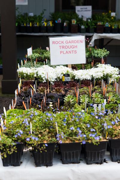 Watnong Plant Sitting 66.jpg