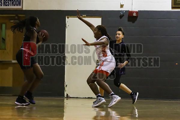 Timber Creek Wolves @ Boone Braves Girls Varsity Basketball - 2018