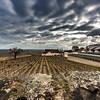 France - Bourgogne - Wine fields