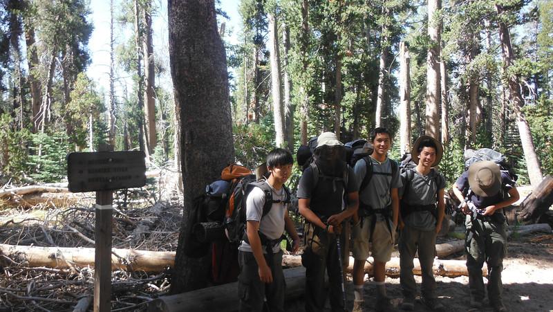 sequoia 050.JPG