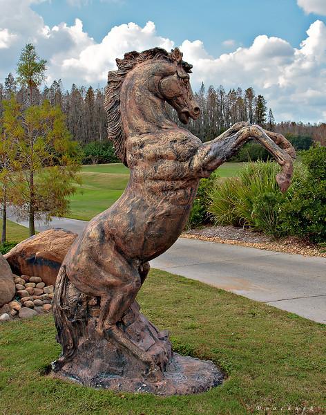 The Cheval Stallion