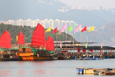 Asia 2006