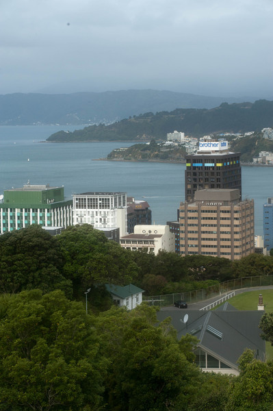 Wellington5625.jpg