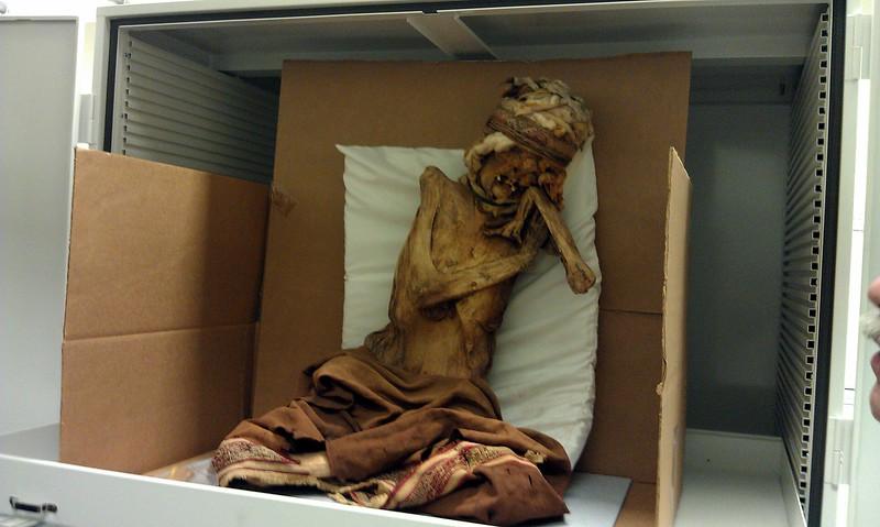 A woman buried in Peru in 1300-1400 CE