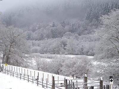 2010 Corris February