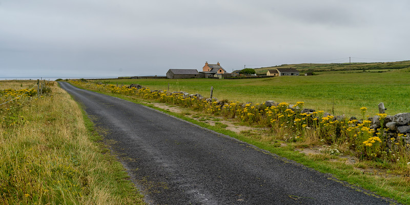 Dirt road passing through field, Grange, County Sligo, Ireland
