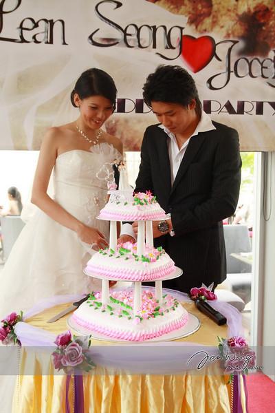 Lean Seong & Jocelyn Wedding_2009.05.10_00292.jpg