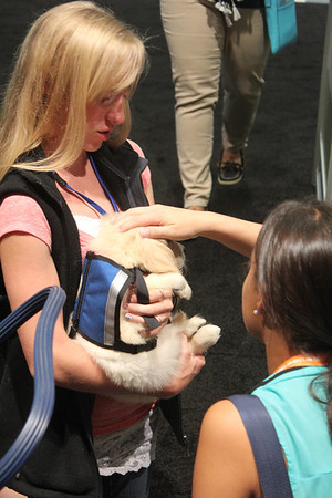2013-07-21 American Veterinary Medical Association National Convention Chicago
