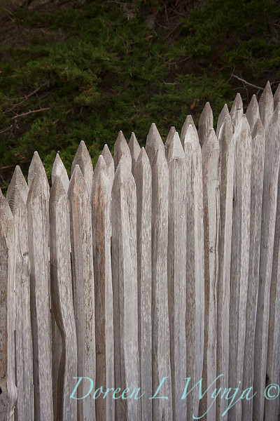 Fencing_047.jpg