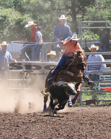 Team Roping Bickleton Rodeo 2013