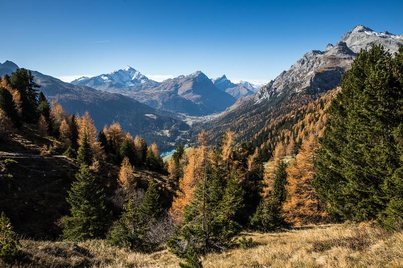 Herbst-Rheinwald-Sufers-Aebli-8.jpg