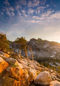Sequoia-Kings Canyon & Yosemite National Park