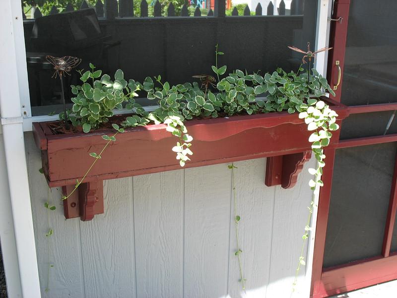 PlanterBoxes (2).jpg
