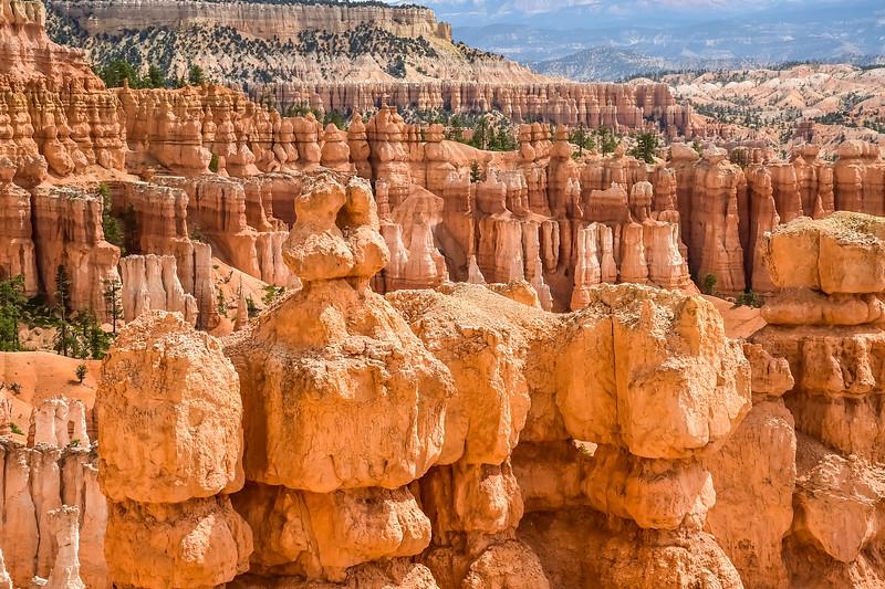 2019 Grand Canyon-116.jpg