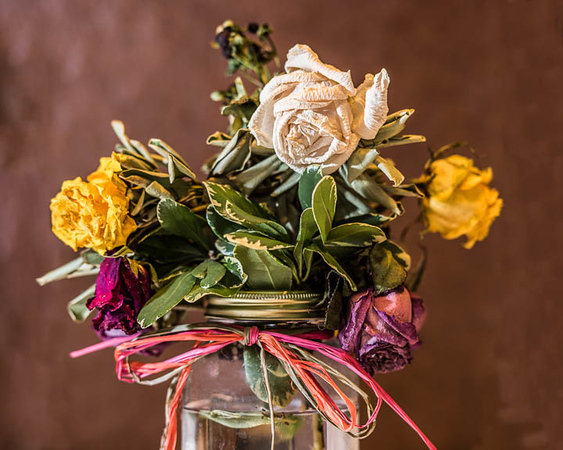 2017-Week 02 - Dried Flowers.jpg