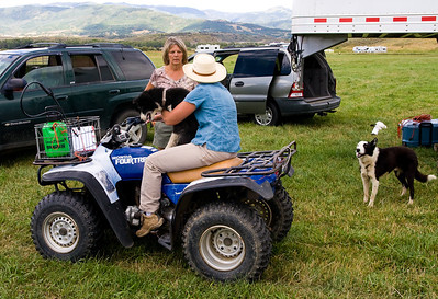 2011 Steamboat Stock Dog Trials