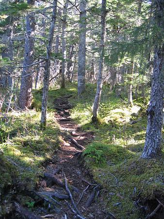 5/21/06 - Mt. Riley Hike - Haines, AK