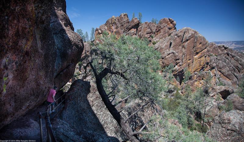 Pinnacles National Park 8017