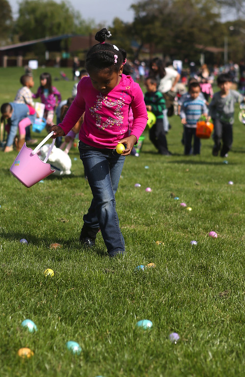 . Gabrielle Bivens, 5, of San Leandro, picks up plastic Easter eggs at the annual San Leandro Easter egg hunt held at Marina Park in San Leandro, Calif., Saturday, April 12, 2014. The event has been held every year since 1951 and this year is sponsored by the San Leandro Optimist Club. 8,000 eggs with a candy or sticker surprise were given away. (Anda Chu/Bay Area News Group)