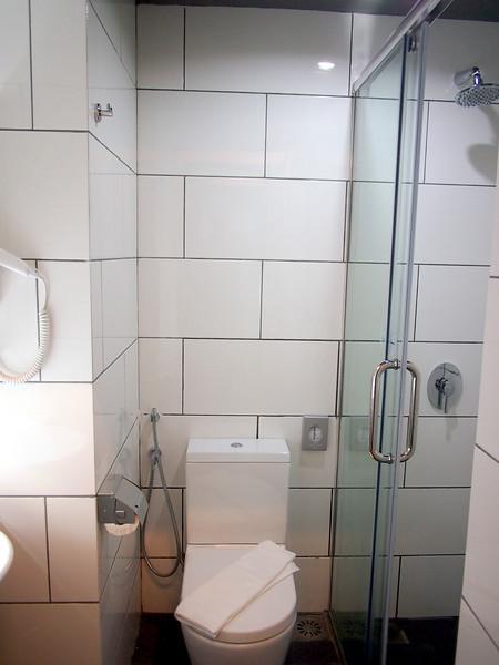 P5309103-shower.JPG