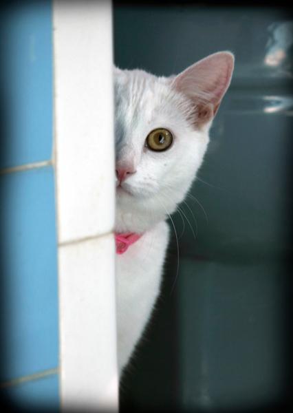 Oona Peeking