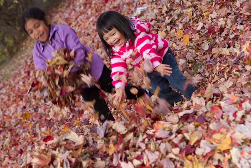 Autumn-Cleaning-2013-23.jpg